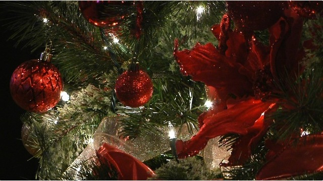 Christmas trees auctioned off