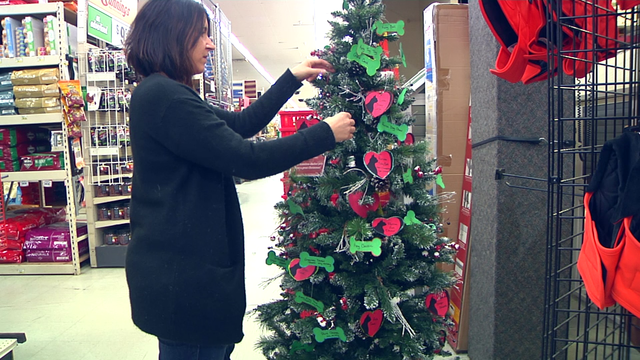 Volunteers set up an Angel Tree for Dickinson animal shelter