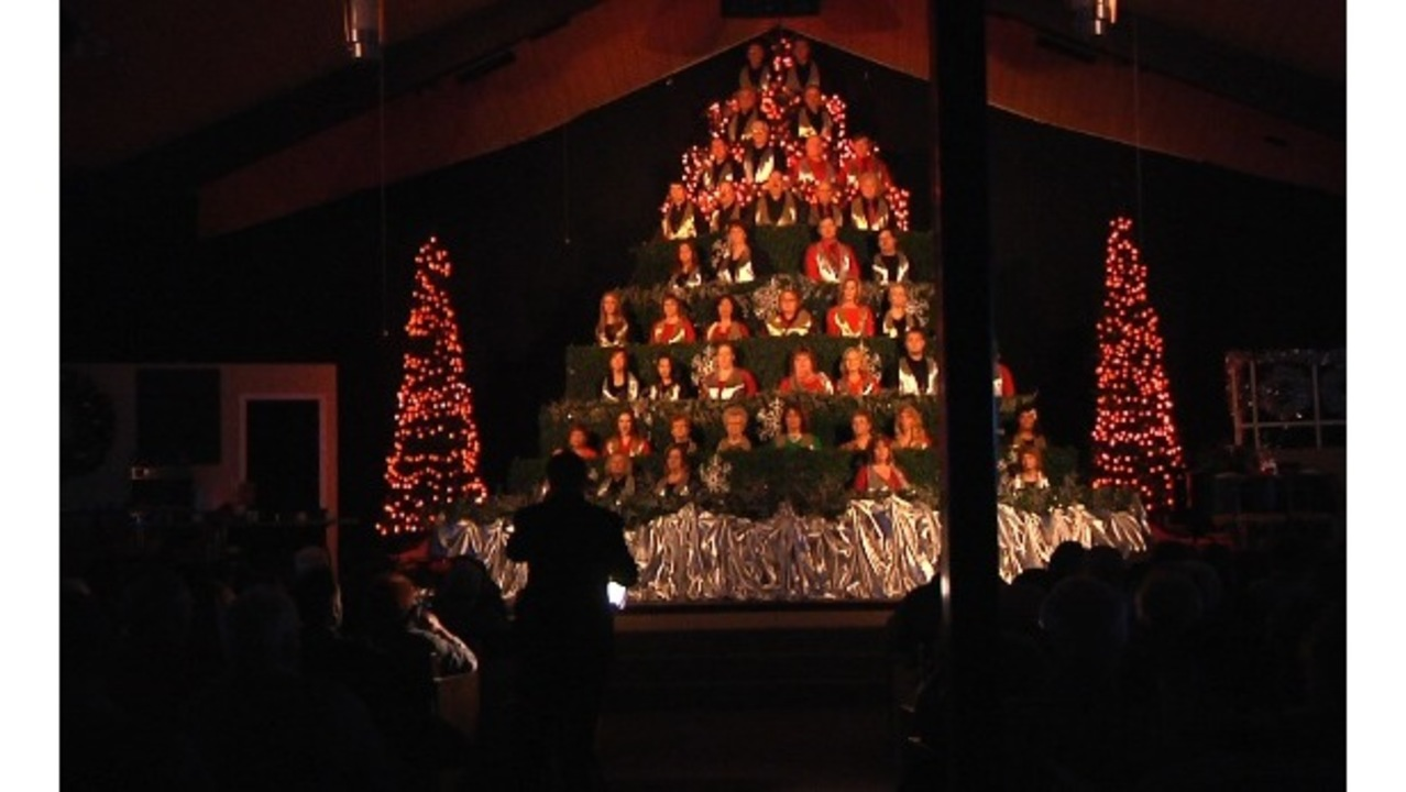 tickets now available for final year of the singing christmas tree - Singing Christmas Tree Lights