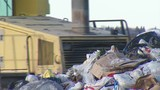 Recycling Specialist Talks What You Can and Can't Recycle